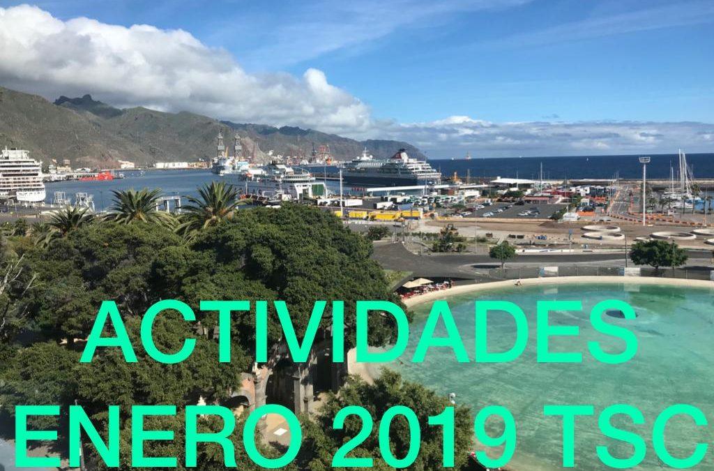 ACTIVIDADES ENERO 2019
