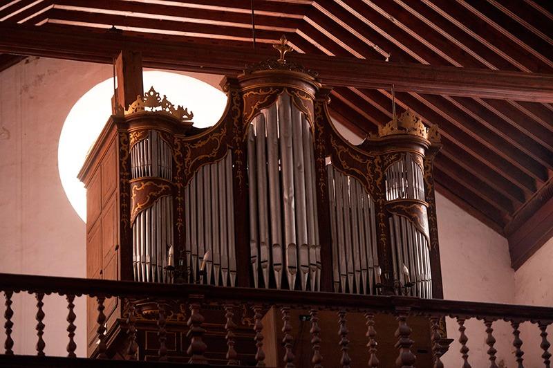 """Conferencia sobre """"Los órganos del mundo"""", a cargo de la Dra. Dña. Rosario Álvarez Martínez. Lunes 28 de enero a las 19:30 horas en el Real Casino de Tenerife."""