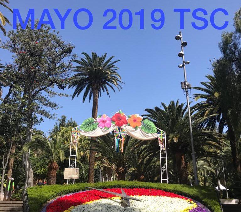 ACTIVIDADES MAYO 2019 TSC